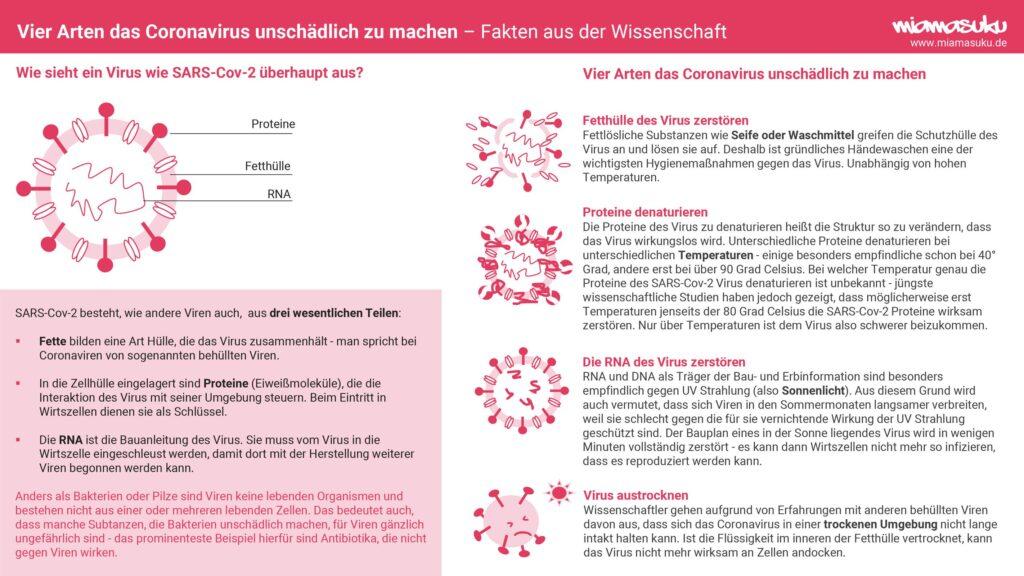 Infografik Coronavirus - Aufbau und was es unschädlich macht!